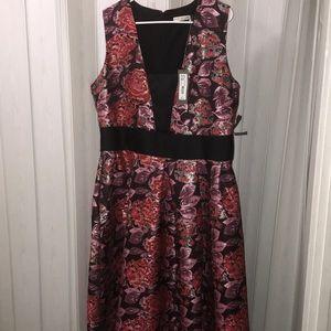 *Never Worn* Eva Mendez New York and Company Dress